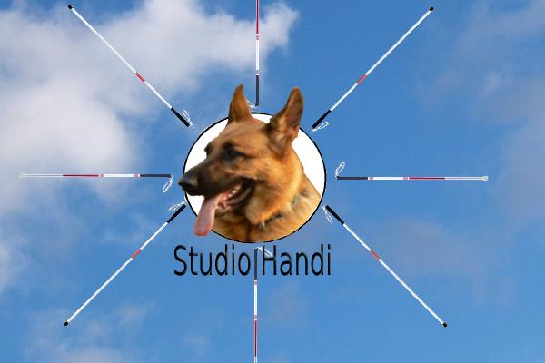 Studio Handi